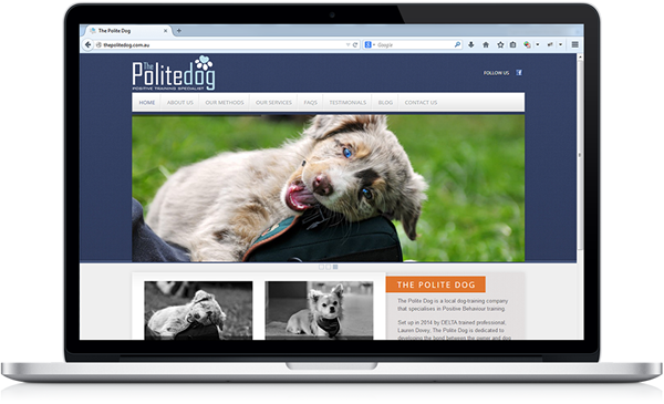 TPD-website-sample-600x365